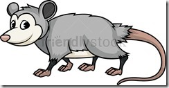 Wild opossum. PNG - JPG and vector EPS (infinitely scalable).